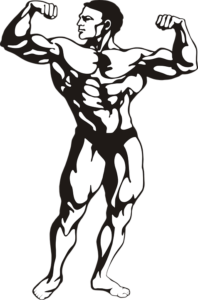 Tips for Building Lean Muscle Mass