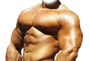 Training Tips On How to Build a Huge Chest
